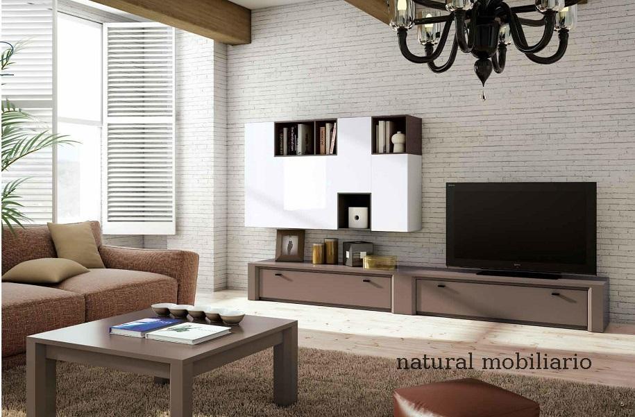 Muebles Contempor�neos salones comtemporaneos eres-1-76-801