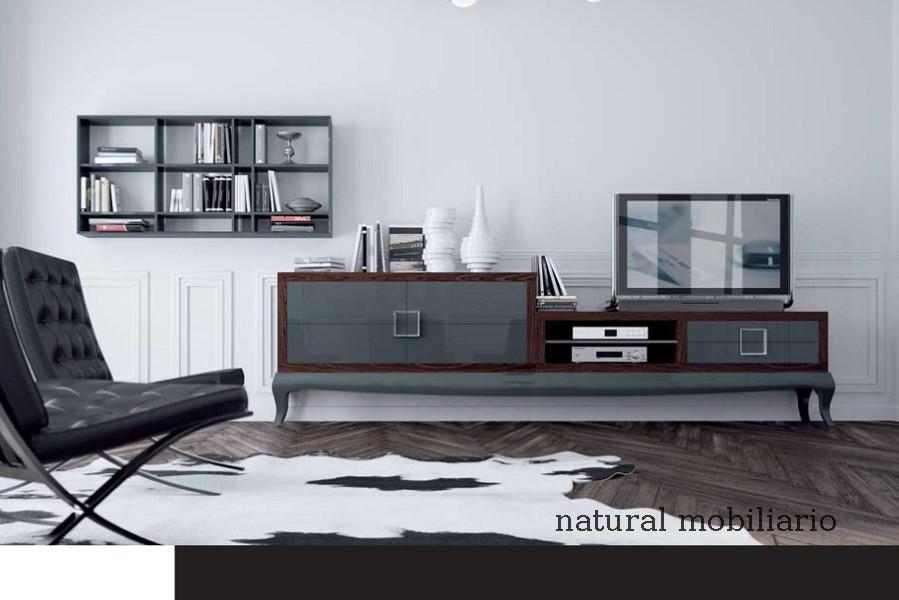 Muebles Contempor�neos salones comtemporaneos eban1-34-951