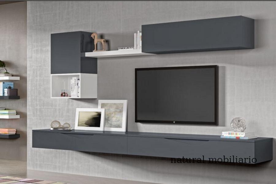 Muebles Modernos chapa natural/lacados salon moderno rovi 1-19-855