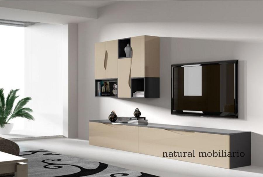 Muebles Modernos chapa natural/lacados salon moderno rovi 1-19-862
