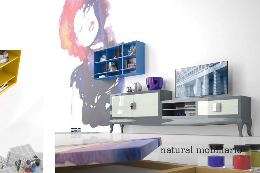 Muebles Contempor�neos salones comtemporaneos ebani1- 34 -1005