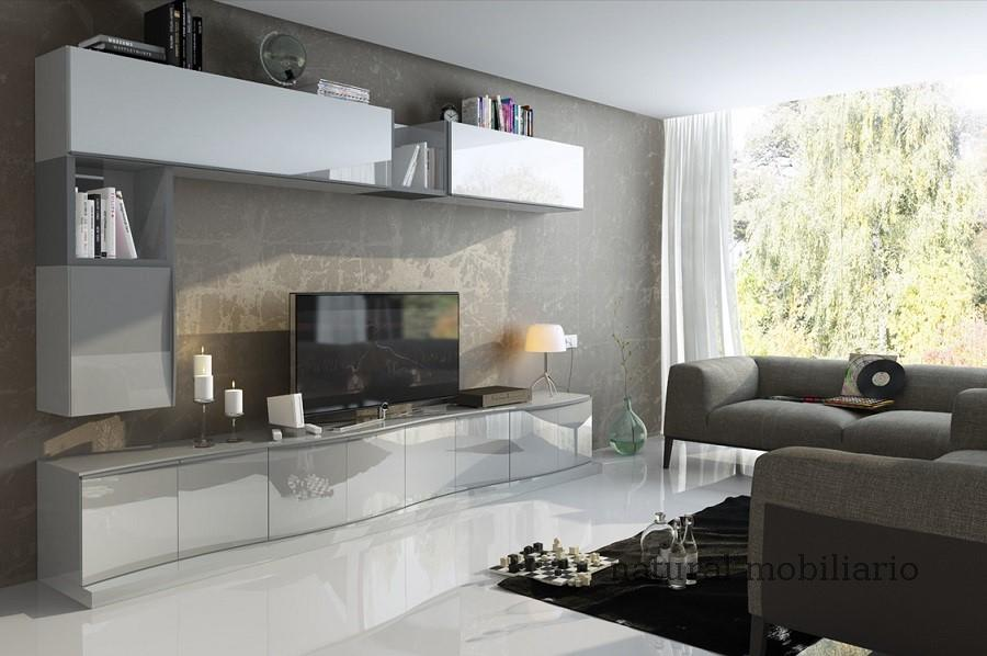 Muebles Modernos chapa natural/lacados salon feni 11-1202