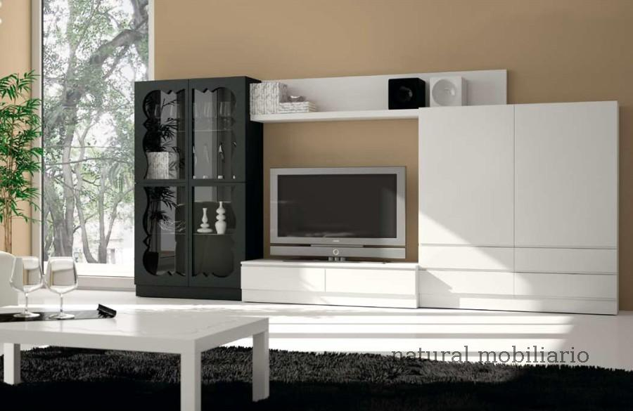 Muebles Contempor�neos salon coim 1-94-913