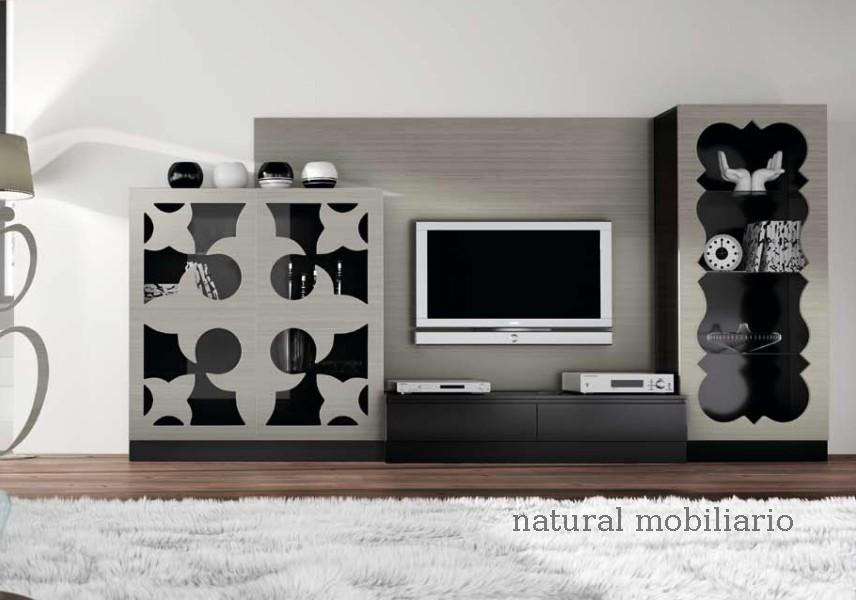 Muebles Contempor�neos salon coim 1-94-903