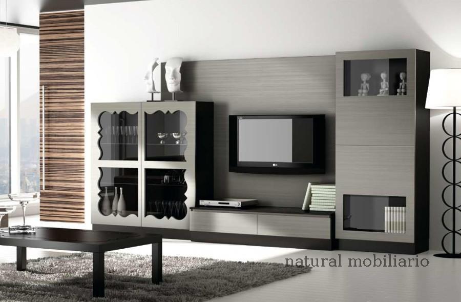 Muebles Contempor�neos salon coim 1-94-902