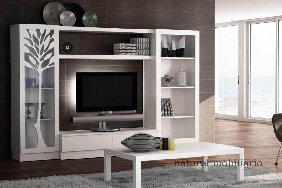 Muebles Contempor�neos salon coim 1-94-904