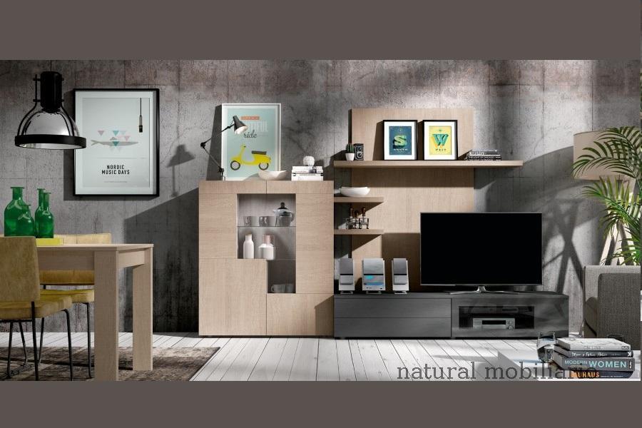 Muebles Modernos chapa sint�tica/lacados salon moderno1-96rosa641