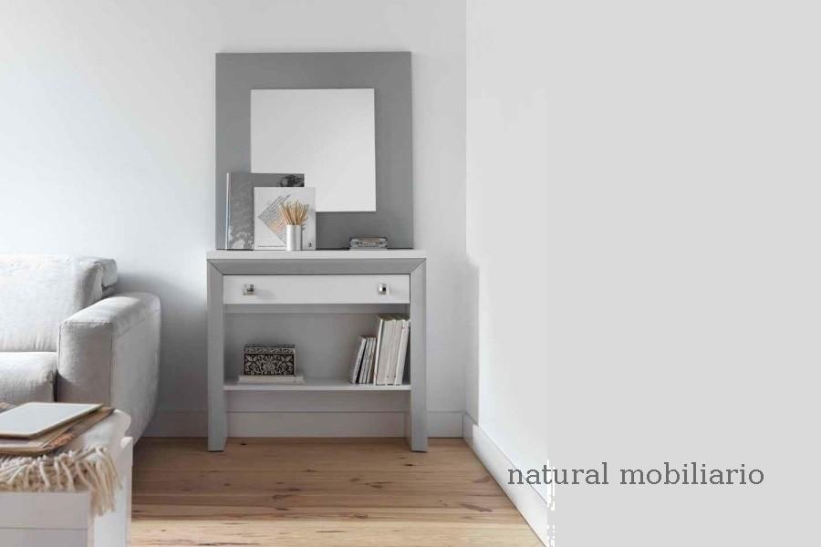 Muebles Recibidores recibidor 1-1cubi800