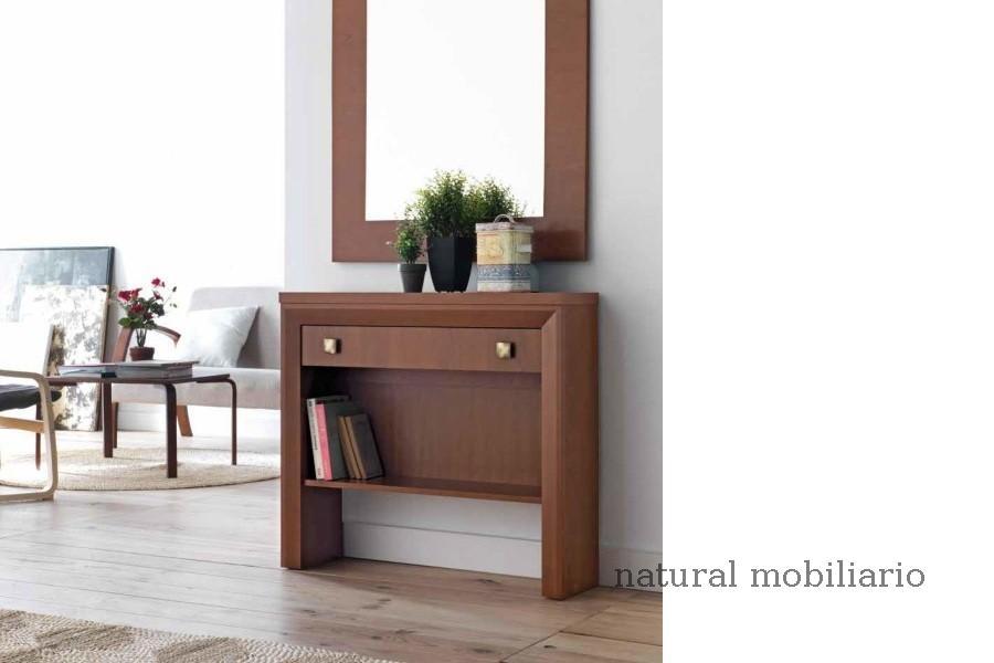 Muebles Recibidores recibidor 1-1cubi807