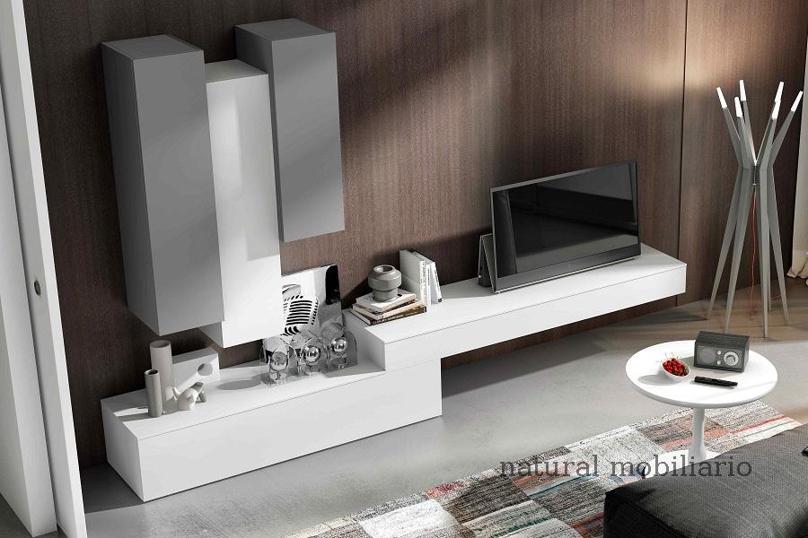Muebles Modernos chapa natural/lacados pife 2-228-308