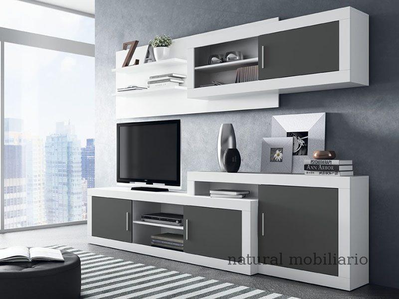 Muebles Modernos chapa sint�tica/lacados salon azor 1-12-1102