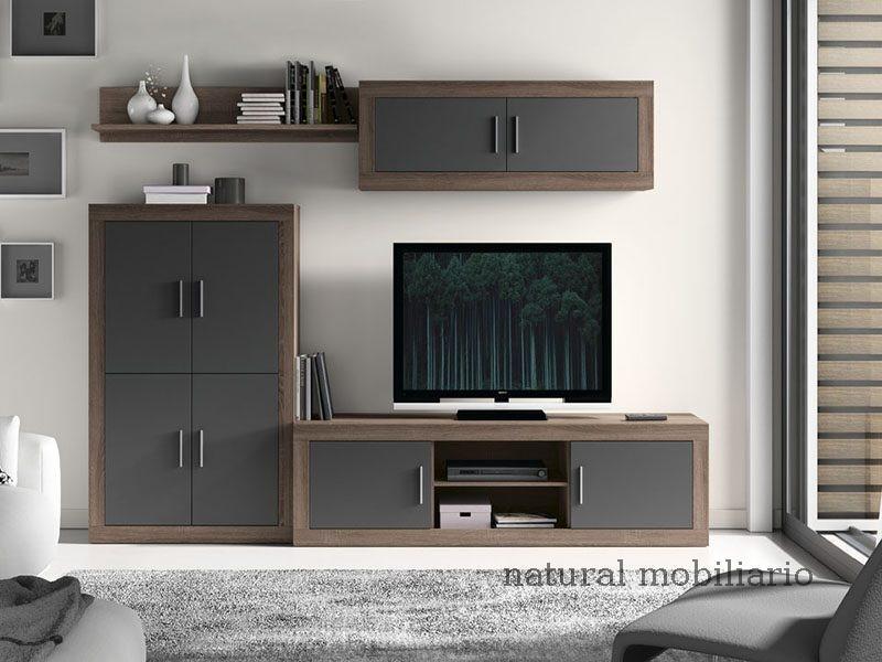 Muebles Modernos chapa sint�tica/lacados salon azor 1-12-1122