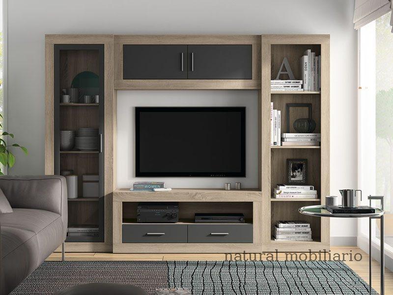Muebles Modernos chapa sint�tica/lacados salon azor 1-12-1103