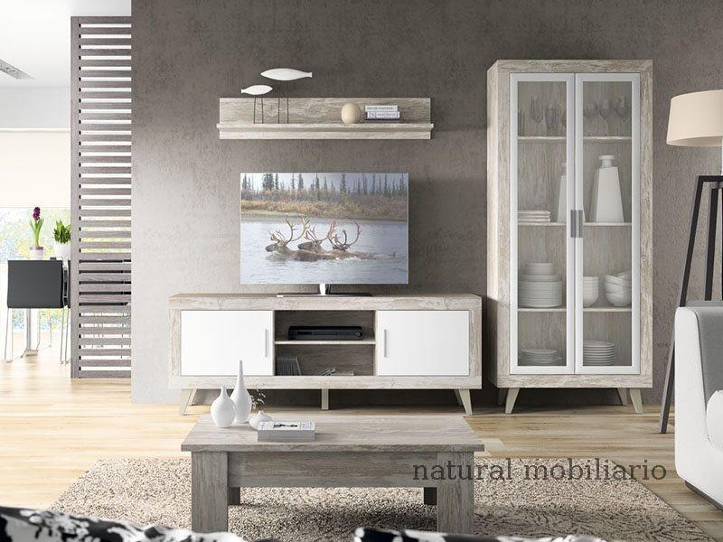 Muebles Salones Modernos salon azor 1-12-1117