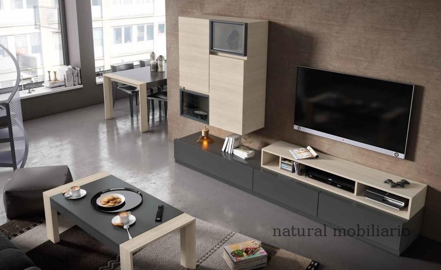 Muebles Modernos chapa sint�tica/lacados 0-66mode1054