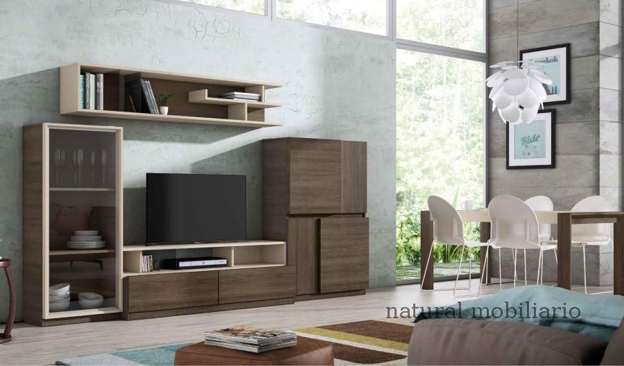 Muebles Modernos chapa sint�tica/lacados 0-66mode1061