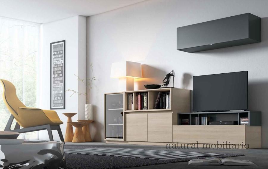 Muebles Modernos chapa sint�tica/lacados 0-66mode1063