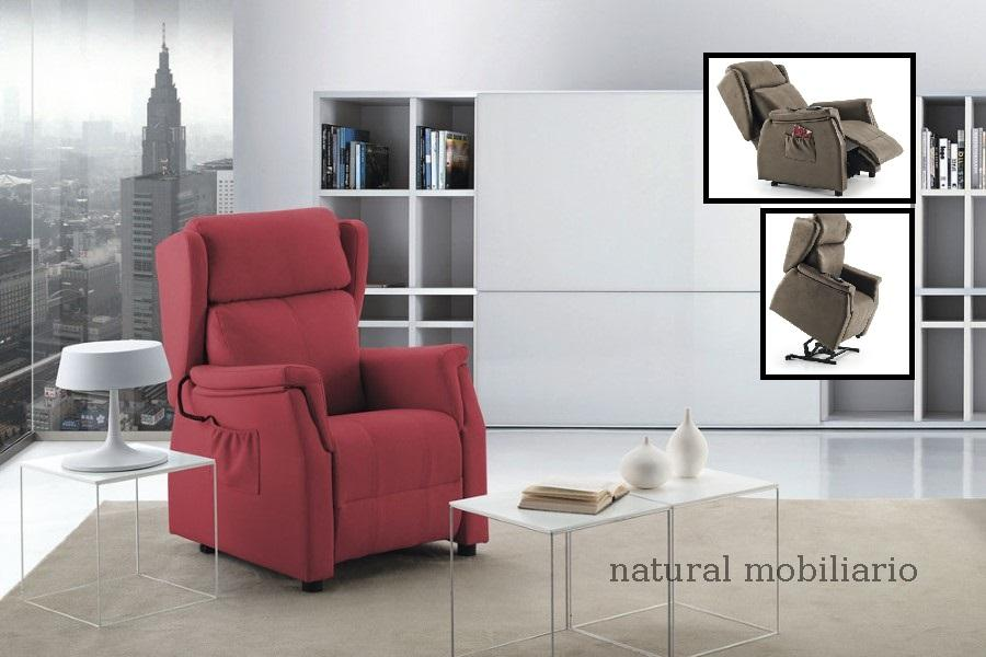 Muebles Sillones relax pelax tm 1-188.453
