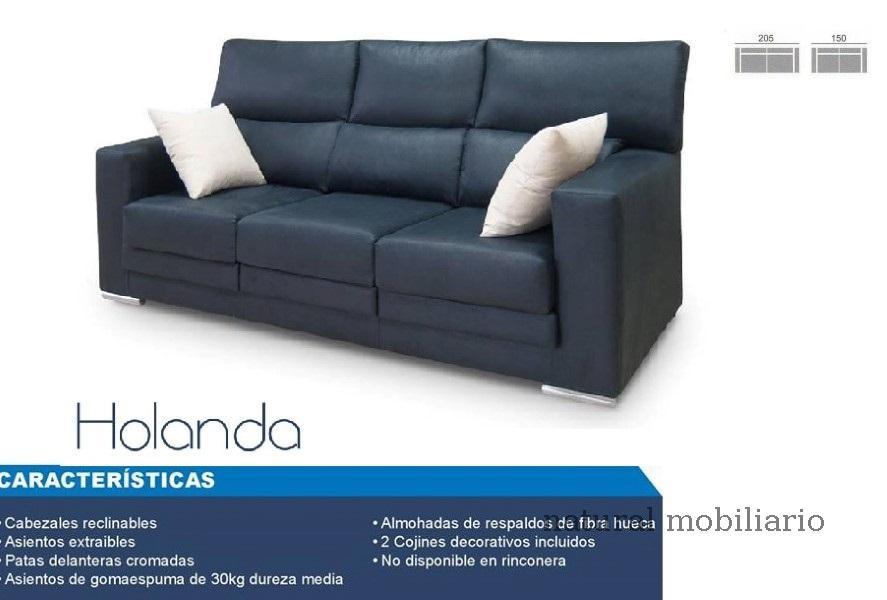 Muebles Sof�s y Chaiselonge sofa promocion 1-465