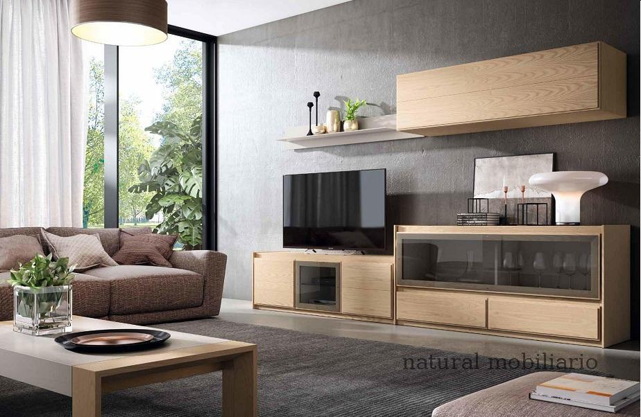 Muebles Contempor�neos salon eliz 2-417