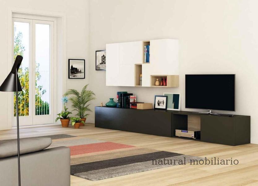 Muebles Muebles para Televisi�n tv deco 2-50
