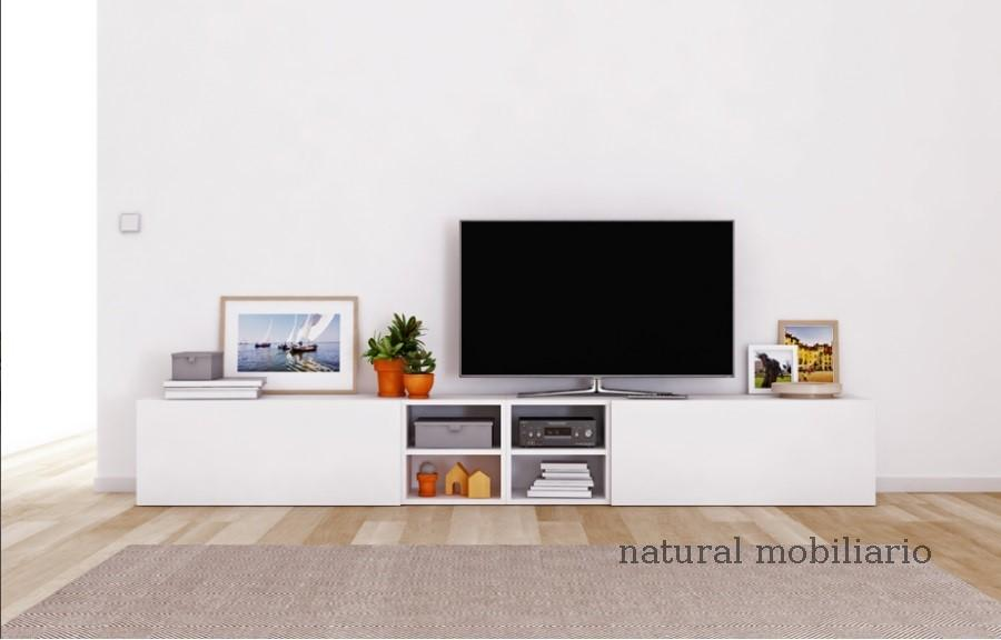 Muebles Muebles para Televisi�n tv deco 2-44