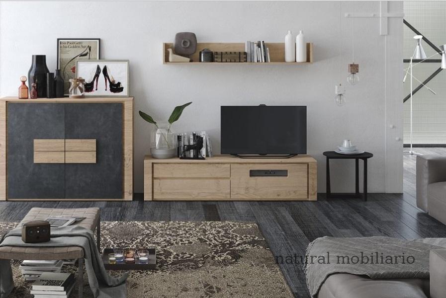Muebles Modernos chapa natural/lacados ambiente gasab 2-97-405