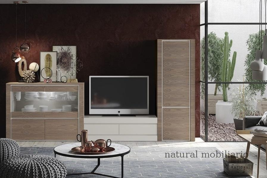 Muebles Modernos chapa natural/lacados ambiente gasab 2-97-409