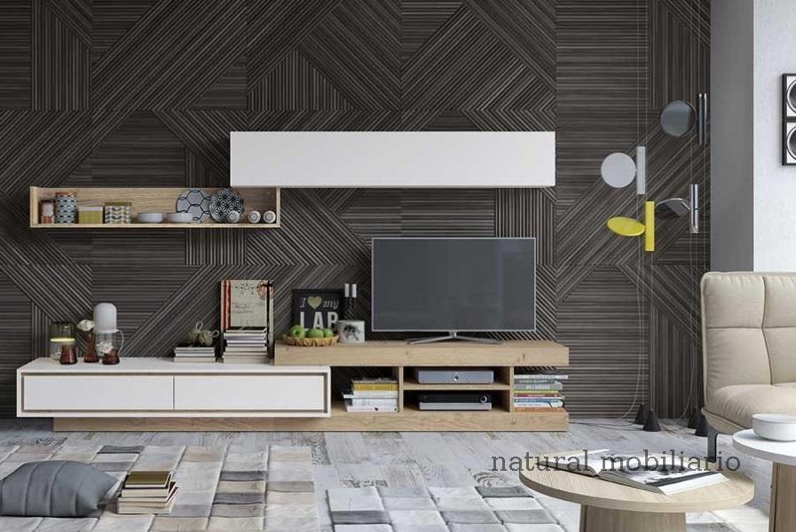 Muebles Modernos chapa natural/lacados ambiente gasab 2-97-404