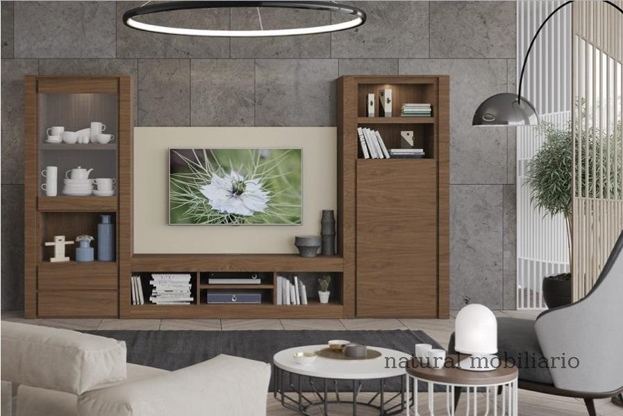 Muebles Modernos chapa natural/lacados ambiente gasab 2-97-406