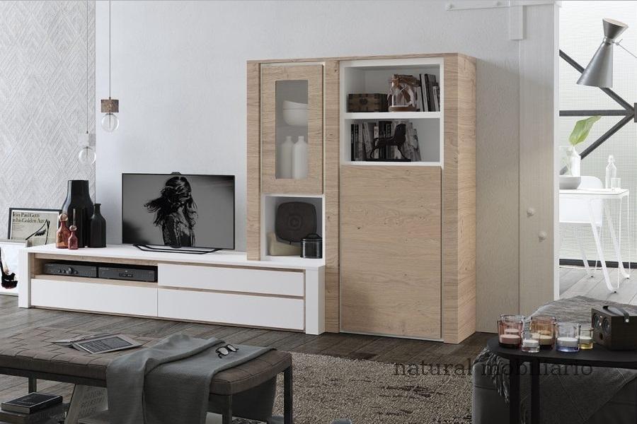 Muebles Modernos chapa natural/lacados ambiente gasab 2-97-402