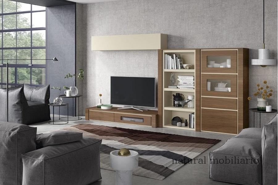 Muebles Modernos chapa natural/lacados ambiente gasab 2-97-408