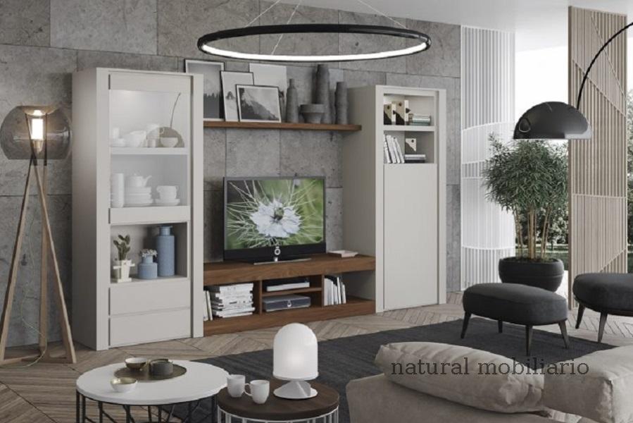 Muebles Modernos chapa natural/lacados ambiente gasab 2-97-407