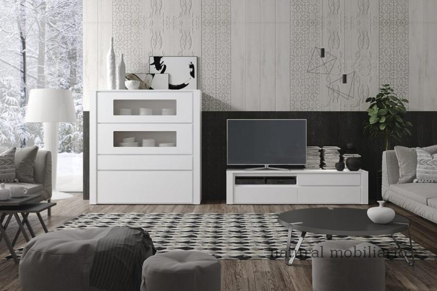 Muebles Modernos chapa natural/lacados ambiente gasab 2-97-412