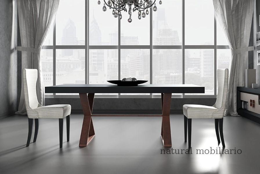 Muebles Mesas de comedor mesa franc 2-05 - 453