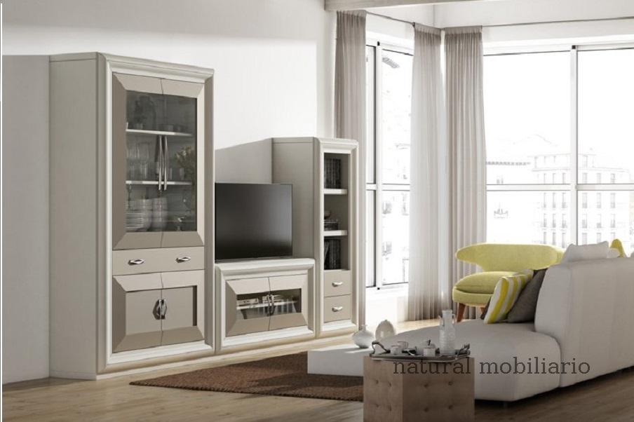 Muebles Contempor�neos salones comtemporaneos 1-408muvi671