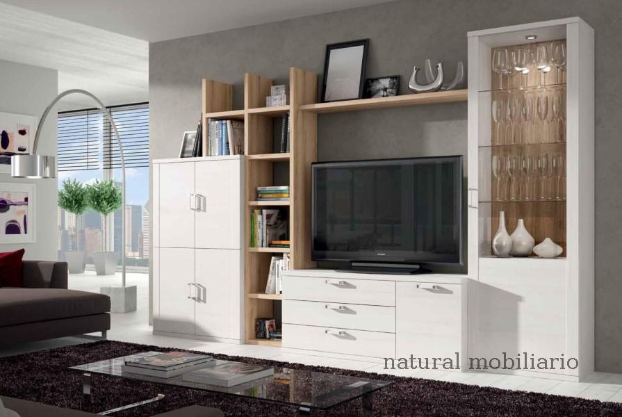 Muebles Modernos chapa sint�tica/lacados salones modernos1-518ramis957