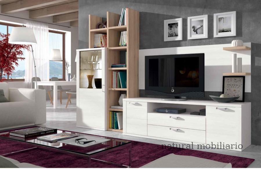 Muebles Modernos chapa sint�tica/lacados salones modernos1-518ramis954