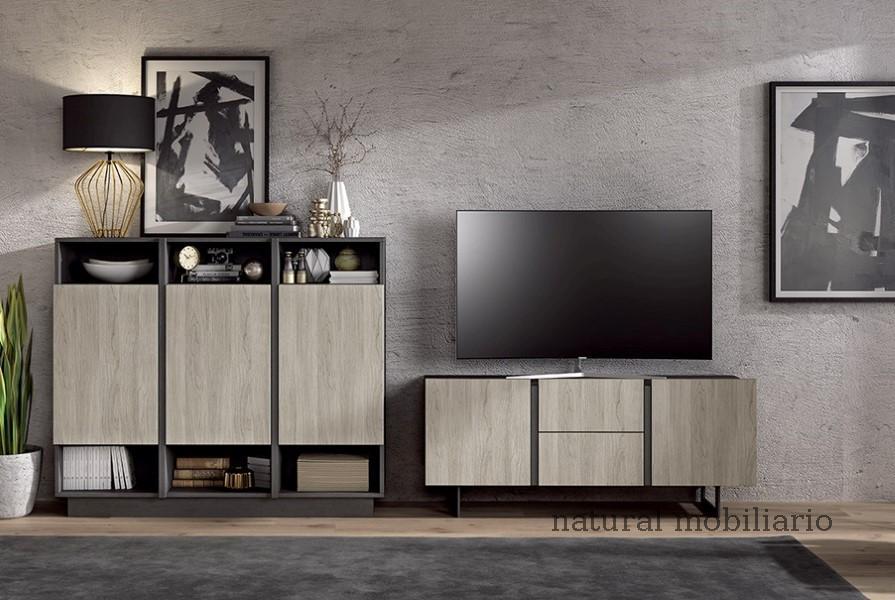 Muebles Modernos chapa sint�tica/lacados salon ka 1-23-403