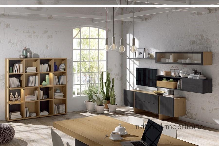 Muebles Modernos chapa sint�tica/lacados salon ka 1-23-406