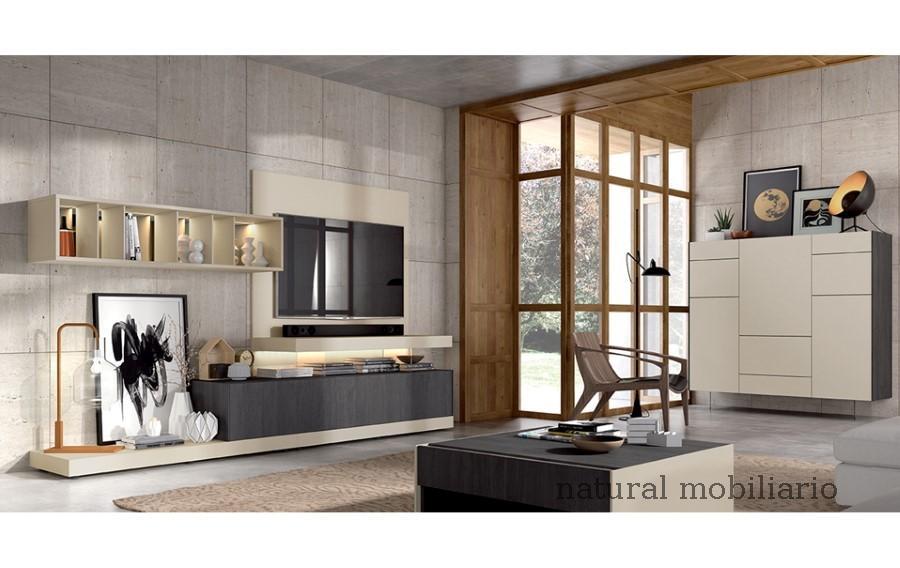 Muebles Modernos chapa sint�tica/lacados salon ka 1-23-428