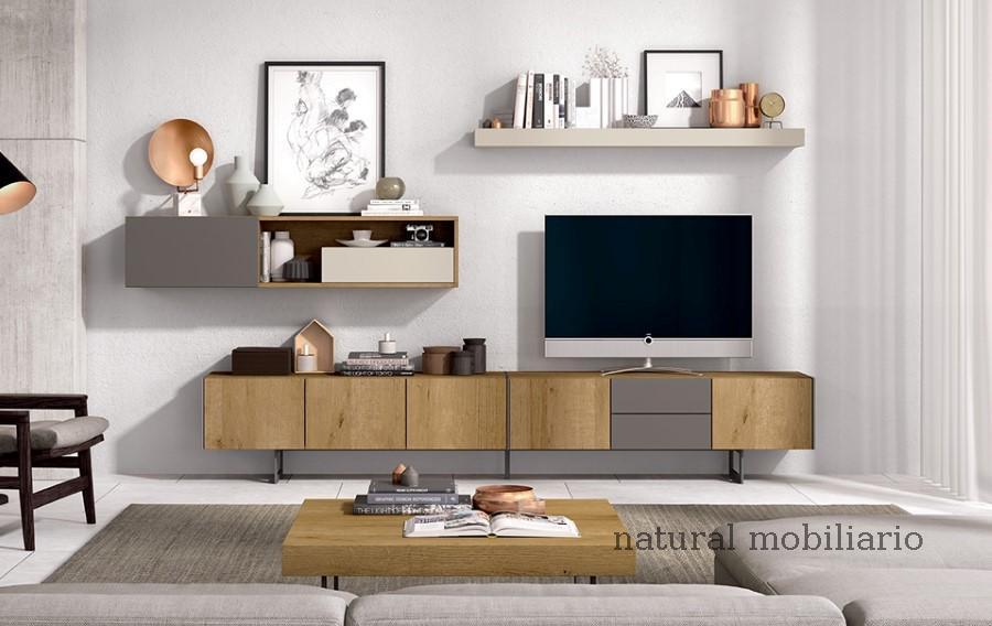 Muebles Modernos chapa sint�tica/lacados salon ka 1-23-426