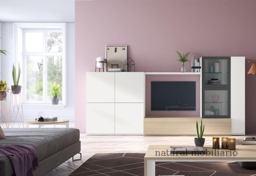 Muebles Modernos chapa sint�tica/lacados salon moderno 1-3-170