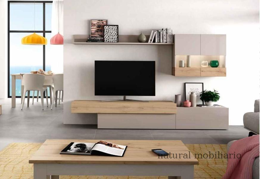 Muebles Salones Modernos salones aura 1-58-295