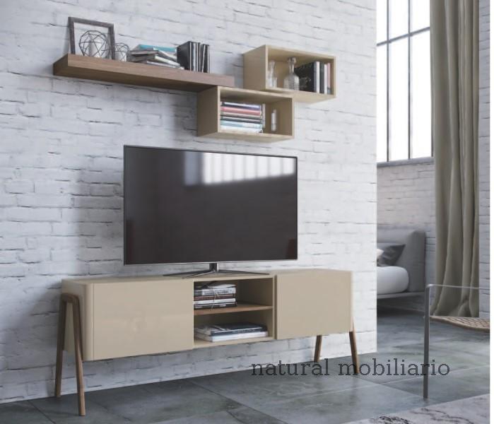 Muebles Muebles para Televisi�n tv auxi 1-1-377